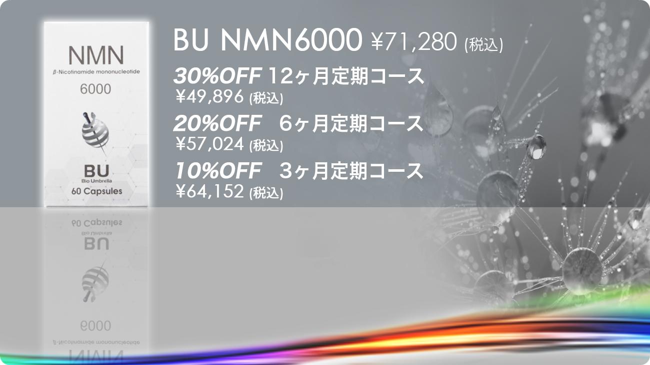 NMN6000